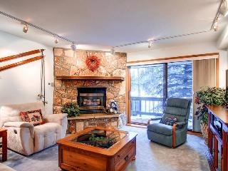 Breckenridge Colorado Vacation Rentals - Apartment