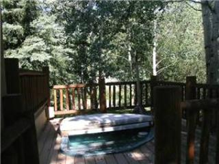 Aspen Colorado Vacation Rentals - Home
