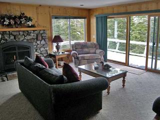 Incline Village Nevada Vacation Rentals - Cabin