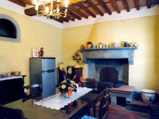 Camigliano Italy Vacation Rentals - Apartment