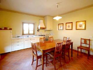 Barberino Val d'Elsa Italy Vacation Rentals - Apartment