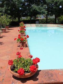 San Donnino Italy Vacation Rentals - Home