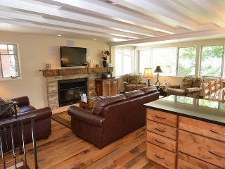 Aspen Colorado Vacation Rentals - Apartment