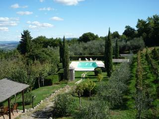The pool is set next to the vineyard, a short distance from the house