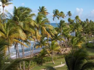 Humacao Puerto Rico Vacation Rentals - Apartment