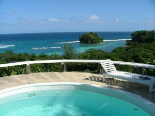Portland Parish Jamaica Vacation Rentals - Villa