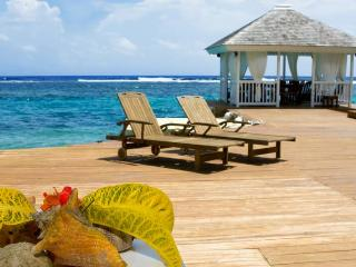 Portland Parish Jamaica Vacation Rentals - Villa