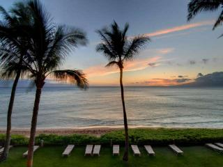 Waimea Hawaii Vacation Rentals - Apartment