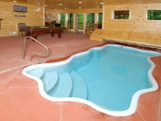 Aqua Paradise - private indoor pool!