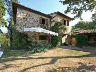 Greve in Chianti Italy Vacation Rentals - Farmhouse / Barn
