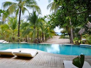 Santa Teresa Costa Rica Vacation Rentals - Villa
