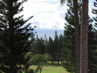 Kapalua Hawaii Vacation Rentals - Apartment
