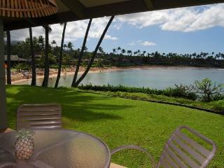 Napili Hawaii Vacation Rentals - Apartment