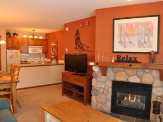 Sun Peaks Canada Vacation Rentals - Apartment