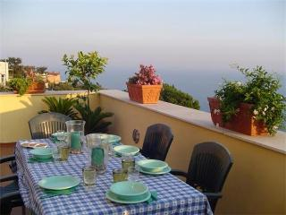 Sant'Agata sui Due Golfi Italy Vacation Rentals - Apartment