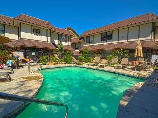 Chelan Washington Vacation Rentals - Apartment