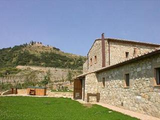 Montalcino Italy Vacation Rentals - Home