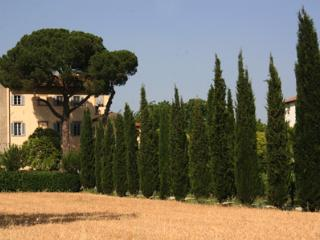 Arezzo Italy Vacation Rentals - Home