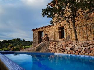 Pradell de la Teixeta Spain Vacation Rentals - Villa
