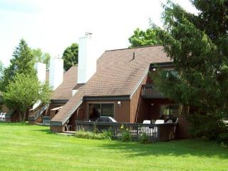 Stowe Vermont Vacation Rentals - Apartment