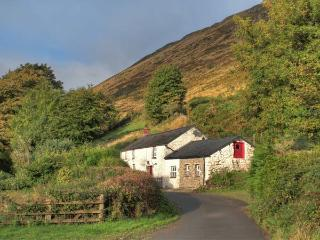 Ffaldybrenin Wales Vacation Rentals - Home