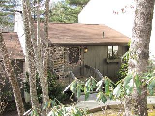 Sapphire North Carolina Vacation Rentals - Apartment