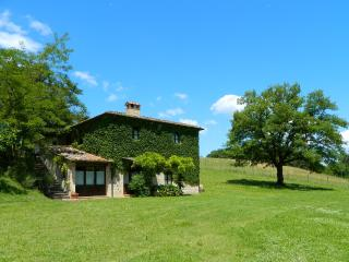 Casole d Elsa Italy Vacation Rentals - Home