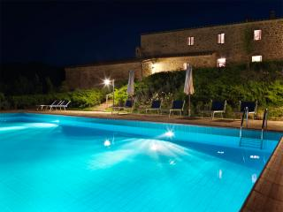 Casole d Elsa Italy Vacation Rentals - Apartment