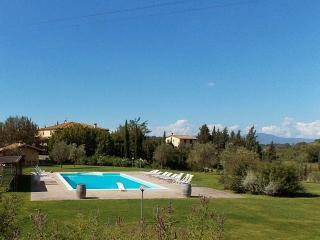 Terricciola Italy Vacation Rentals - Villa