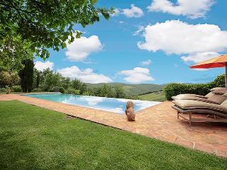 Gaiole in chianti Italy Vacation Rentals - Villa