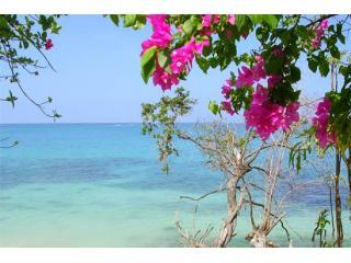 Whitehouse Jamaica Vacation Rentals - Villa