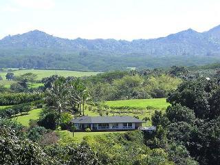 Kilauea Hawaii Vacation Rentals - Home
