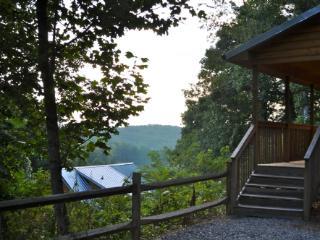 Asheville North Carolina Vacation Rentals - Cabin