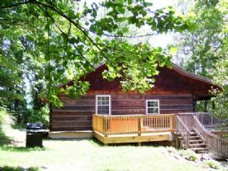 Asheville North Carolina Vacation Rentals - Cabin