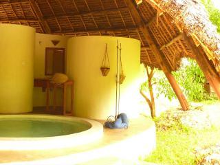 Zanzibar Tanzania Vacation Rentals - Villa