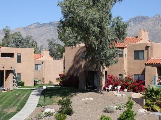 Tucson Arizona Vacation Rentals - Apartment