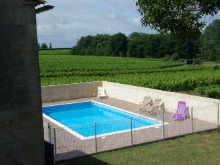 Saint-Quentin-De-Caplong France Vacation Rentals - Villa