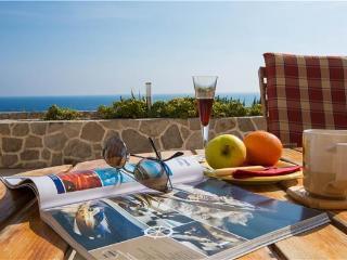 Dubrovnik Croatia Vacation Rentals - Apartment