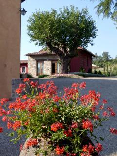 Barberino Val d' Elsa Italy Vacation Rentals - Studio