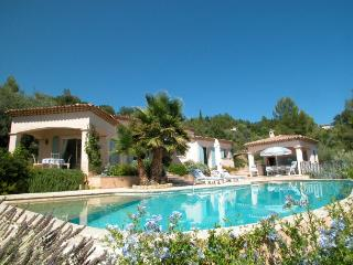 Montauroux France Vacation Rentals - Villa