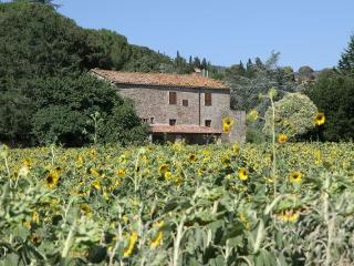 Camucia Italy Vacation Rentals - Home