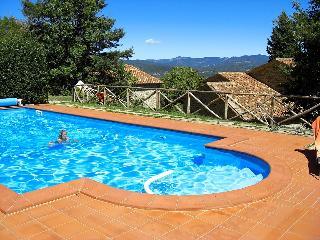 Caprese Michelangelo Italy Vacation Rentals - Home