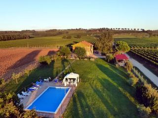 Torgiano Italy Vacation Rentals - Home