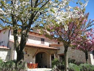 Molino del Piano Italy Vacation Rentals - Home