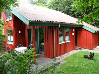 Vacation House in Extertal - 861 sqft, relaxing, comfortable, quiet (# 4432) #4432
