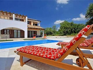 Baderna Croatia Vacation Rentals - Villa