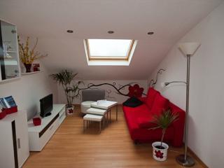 Weil am Rhein Germany Vacation Rentals - Apartment