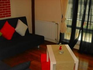 Istanbul Turkey Vacation Rentals - Apartment