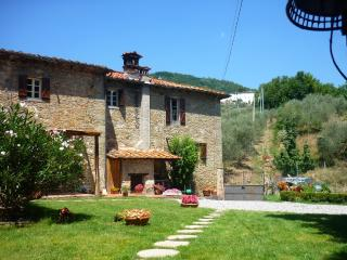 Capannori Italy Vacation Rentals - Home