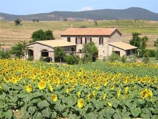 Scansano Italy Vacation Rentals - Villa